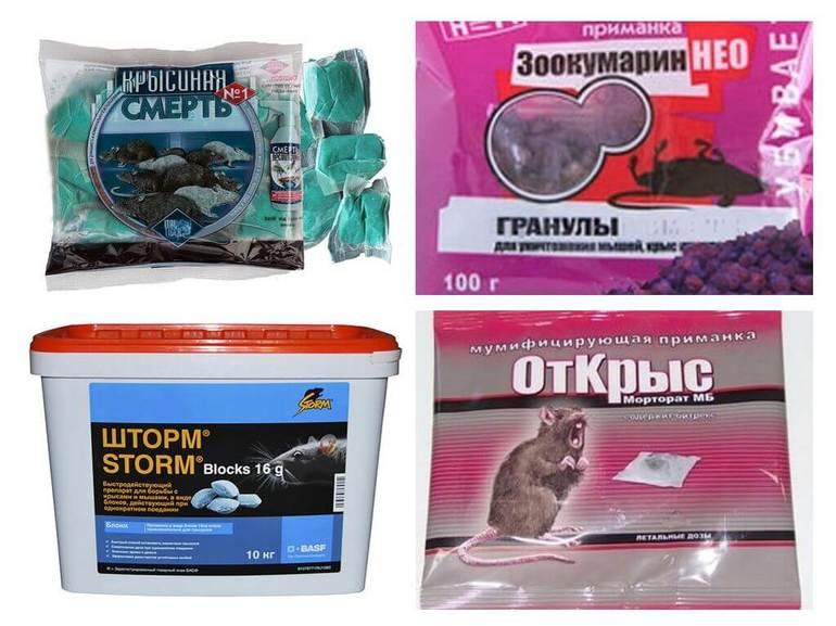 Яды и химикаты от крыс