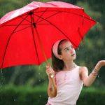 Как ухаживать за зонтом