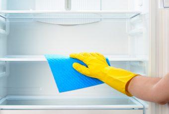 Избавляемся от плесени в холодильнике