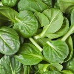 как заморозить шпинат на зиму