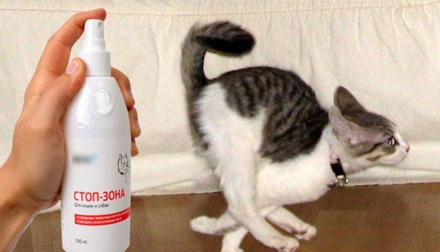 Запах отпугивающий кошек