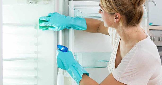 Удалить запах в холодильнике внутри после разморозки помогут простые средства