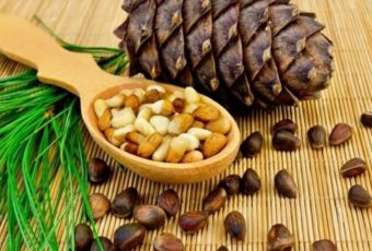 Как легко почистить кедровые орехи от скорлупы дома