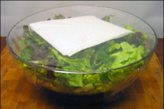 хранение салата