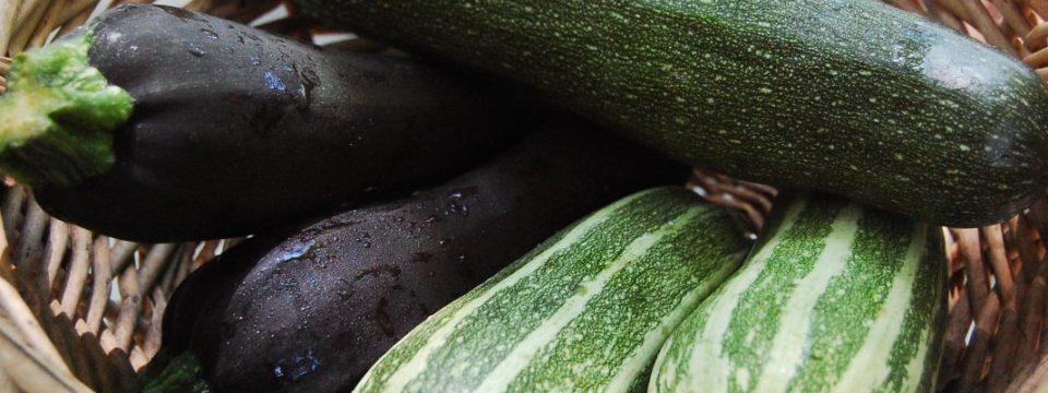 Заморозка кабачков на зиму в домашних условиях: проверенные способы