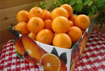 Как правильно хранить апельсины в квартире