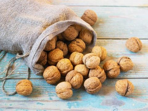 Как хранить грецкие орехи- очищенные, в скорлупе, зеленые, почему горчат, как убрать горечь