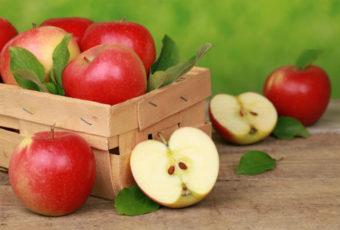 Как правильно хранить яблоки на зиму в квартире