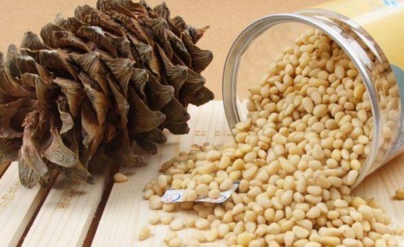Как хранить кедровые орехи в домашних условиях: очищенные и в скорлупе