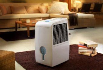 Какой увлажнитель воздуха лучше купить в квартиру или дом: как правильно выбрать