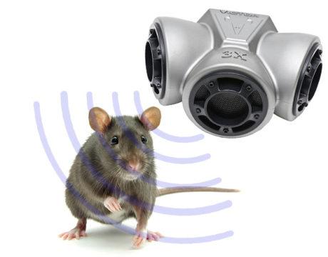 ультразвук в борьбе с мышами