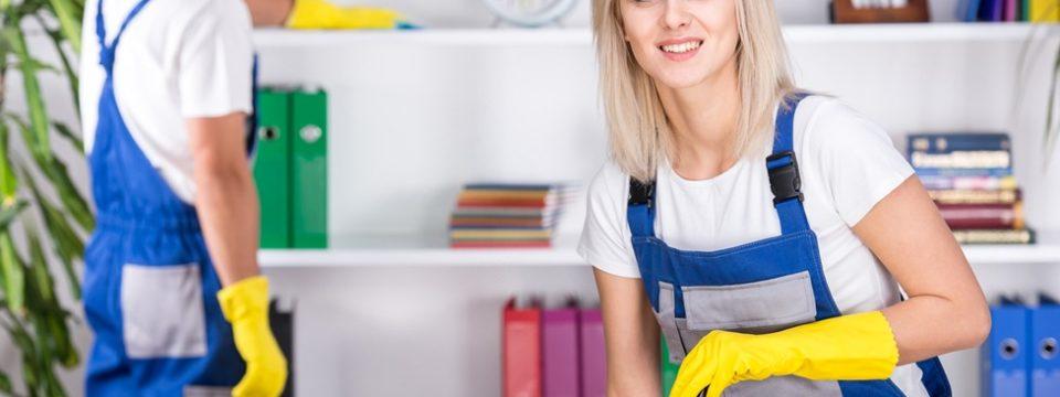 Полезные советы профессионалов по уборке дома