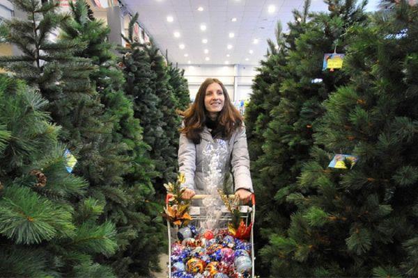 Где можно купить елку в Москве