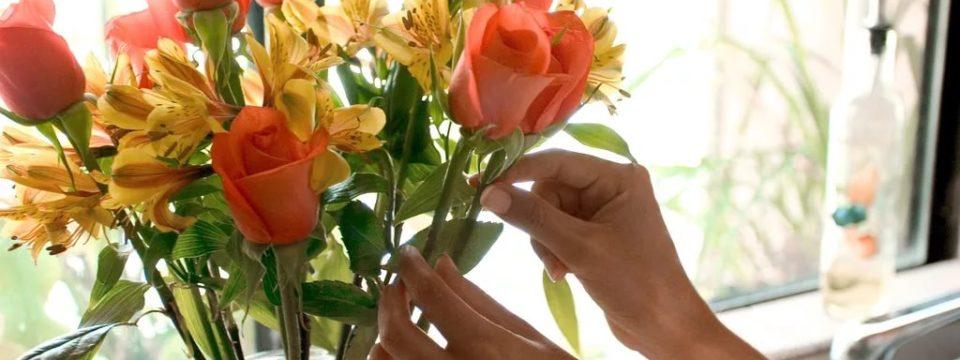 10 способов сохранить цветы в вазе свежими надолго: методы сохранения