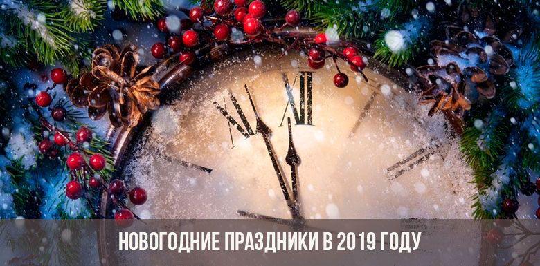Как россияне отдыхают на январские праздники в 2019 году
