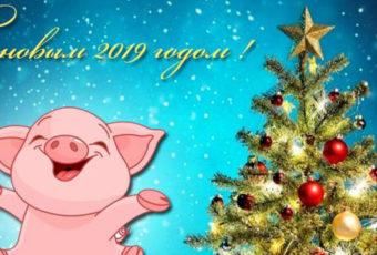 Поздравления с наступающим Новым годом 2019 Свиньи