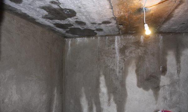 Как устранить влажность в погребе или подвале