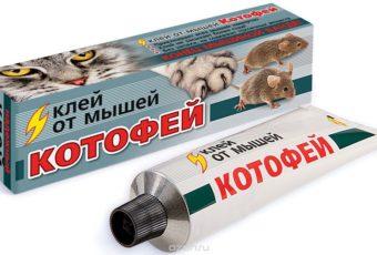 Клей для уничтожения мышей и крыс: инструкция по применению