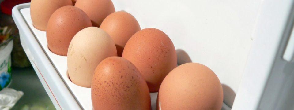 Сколько дней хранятся яйца в холодильнике