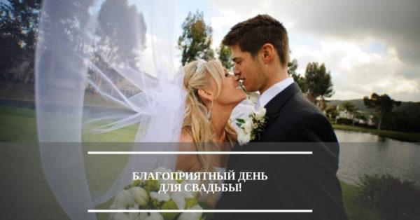Стоит ли планировать свадьбу в наступающем 2019 году?