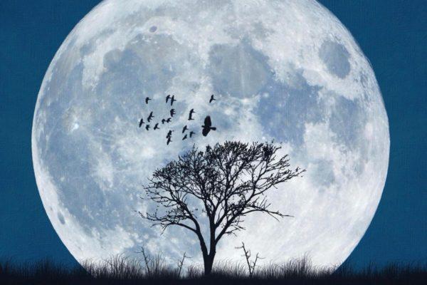 Нельзя и можно – астрологи о полной Луне