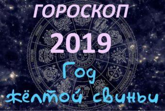 Самый точный гороскоп на 2019 год по знакам зодиака и по году рождения