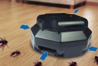 Самые эффективные ловушки для тараканов: изготовление своими руками