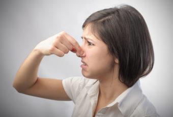 Почему пахнет канализацией в частном доме: что делать, как избавиться от запаха, способы устранения проблемы