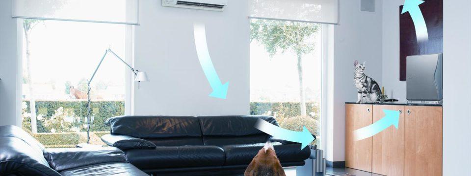 Показатели нормальной влажности воздуха в помещении