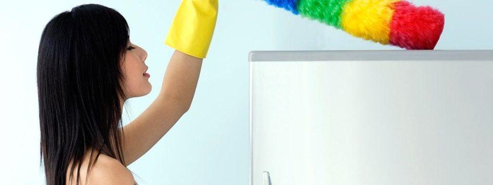 Щетка для уборки: разновидности, описание, как правильно выбрать