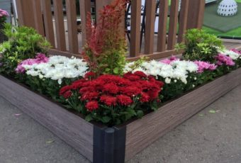 Красивые цветники и клумбы своими руками на даче