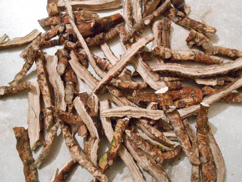 Рецепт на основе лапчатки, аира и березовой коры
