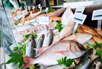 Какая рыба вызывает онкологию