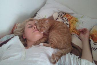 Медики объяснили, почему нельзя спать рядом или в обнимку с кошкой