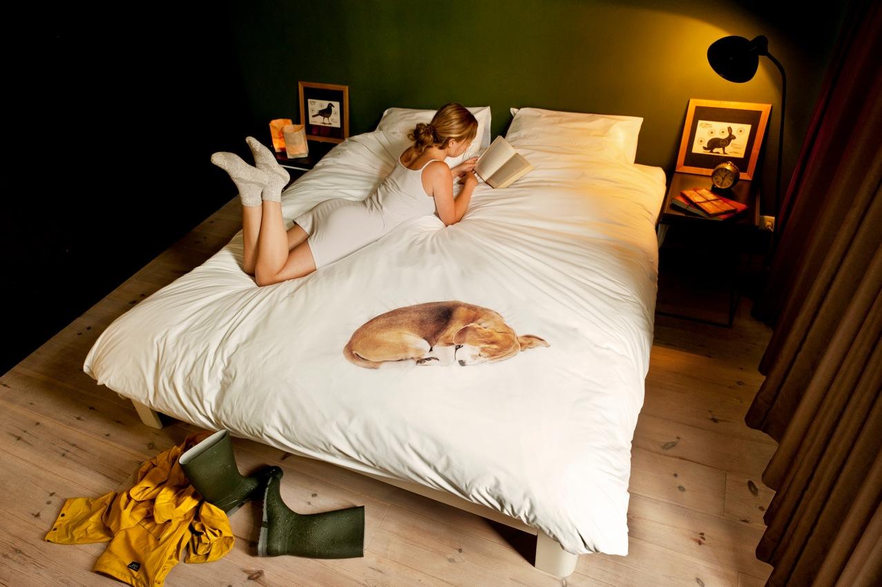 Домашние животные в кровати