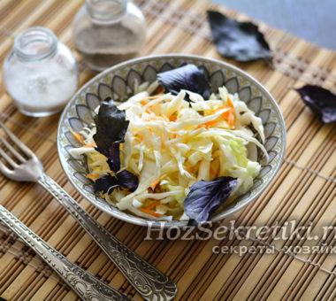 Суточная капуста с морковью и чесноком быстрого приготовления