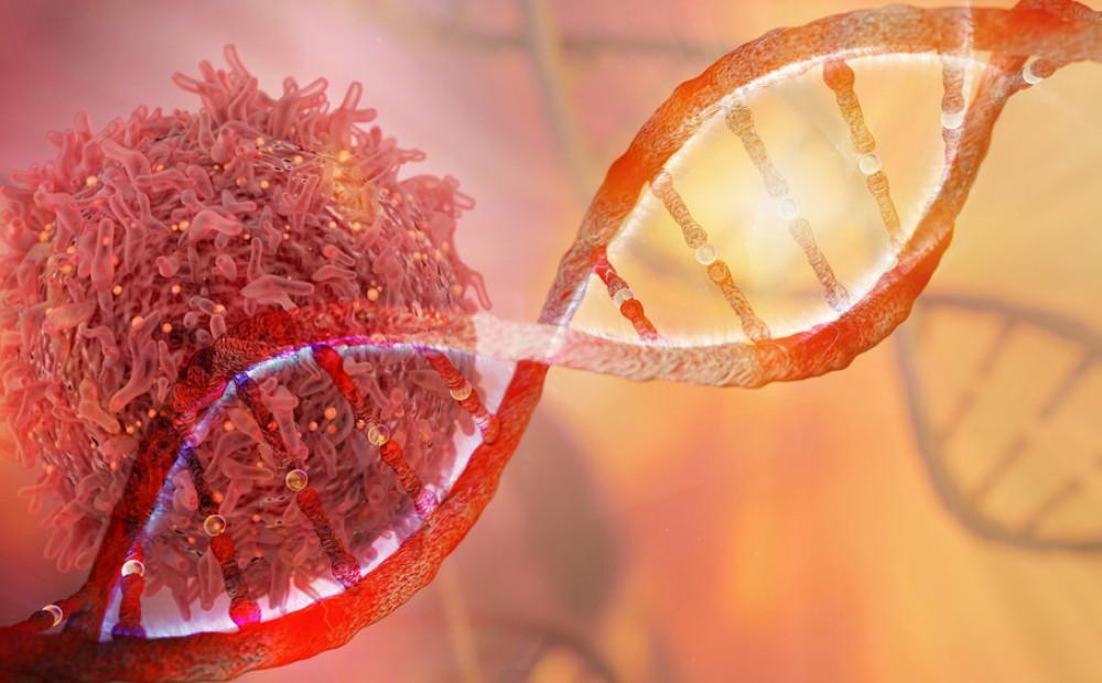 ДНК раковых клеток