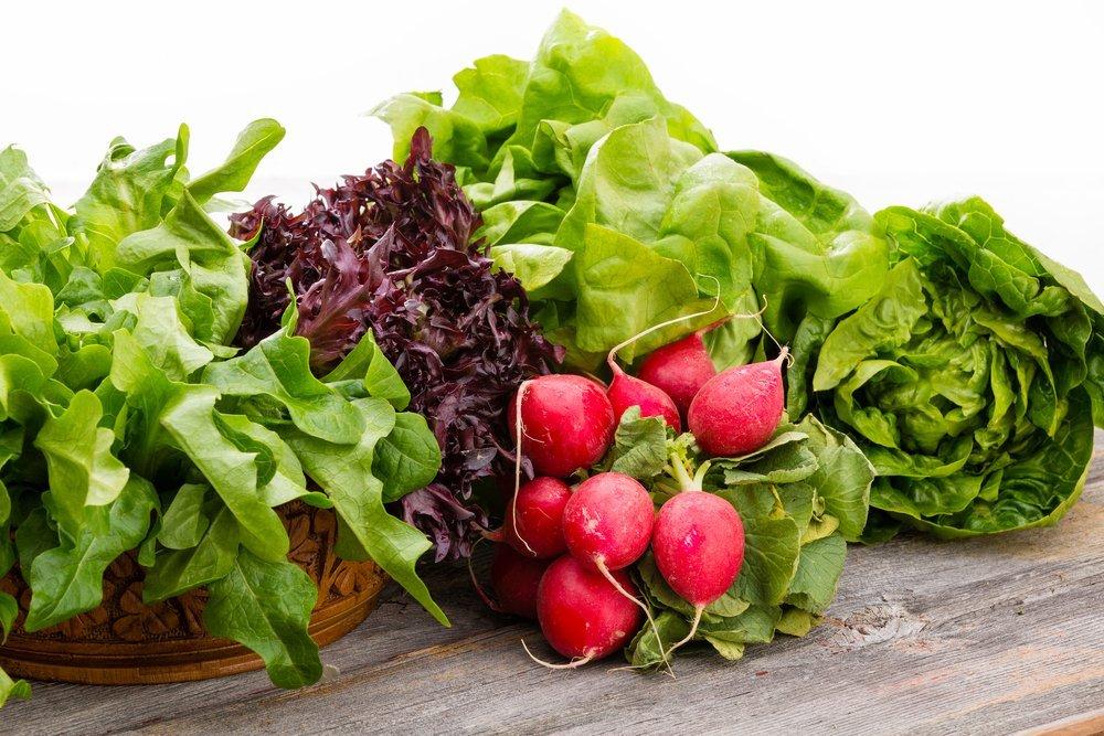 Зелень, лук, салат
