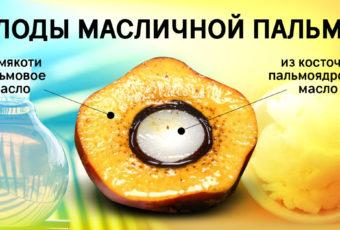 Как обнаружить в продукте пальмовое масло