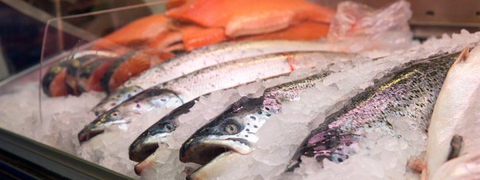 Какую рыбу точно не нужно покупать на прилавках в России