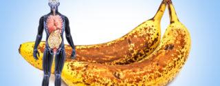 Что будет с организмом, если есть бананы каждый день