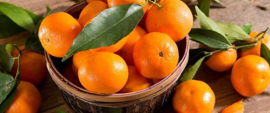 Врачи рассказали, сколько мандаринов можно съедать за день