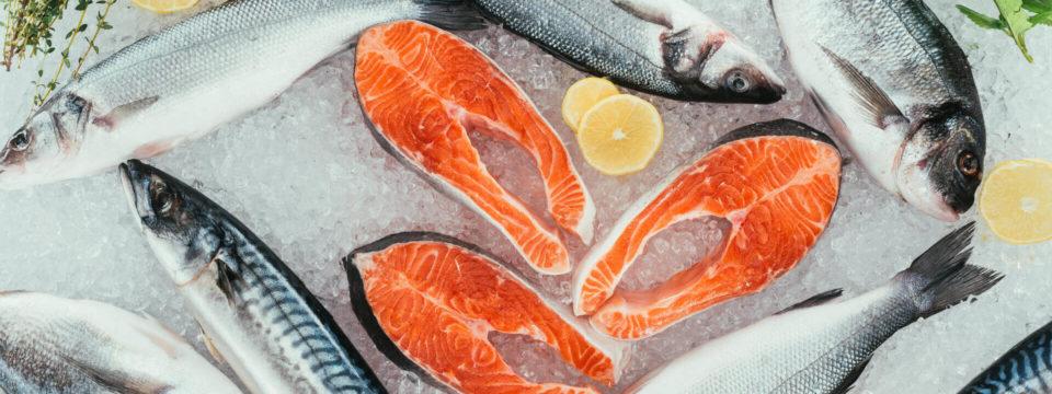 7 самых полезных сортов рыбы