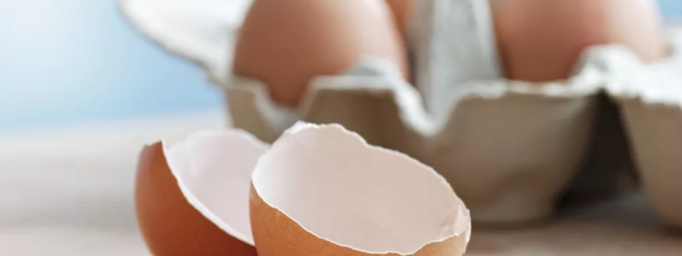 12 причин не выбрасывать яичную скорлупу
