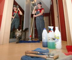 Эффективные способы обрабатывать квартиру от коронавируса