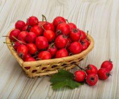 Особенности хранения боярышника дома и сроки годности для свежей и сушеной ягоды