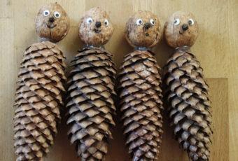Что сделать из шишек для выставки поделок в школе или в детском саду