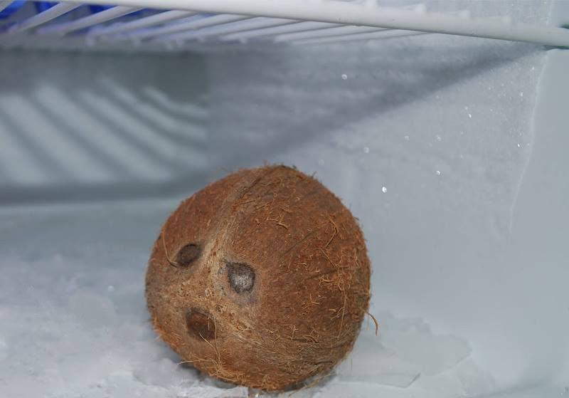 Срок годности кокоса и продуктов из него в домашних условиях