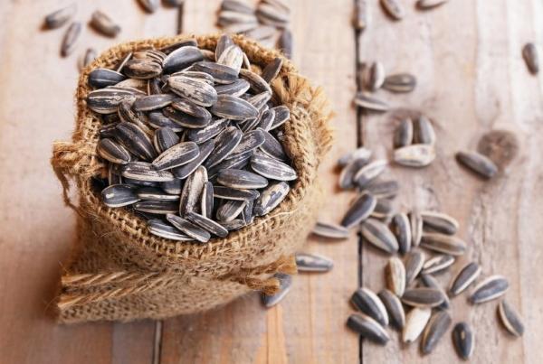 Как долго хранятся семечки подсолнечника и тыквы и условия хранения