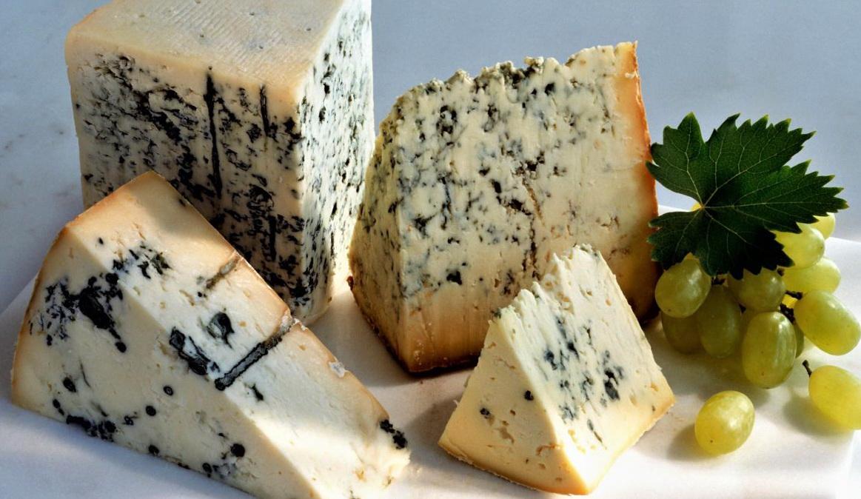 Как правильно хранить сыр с плесенью и сроки годности продукта